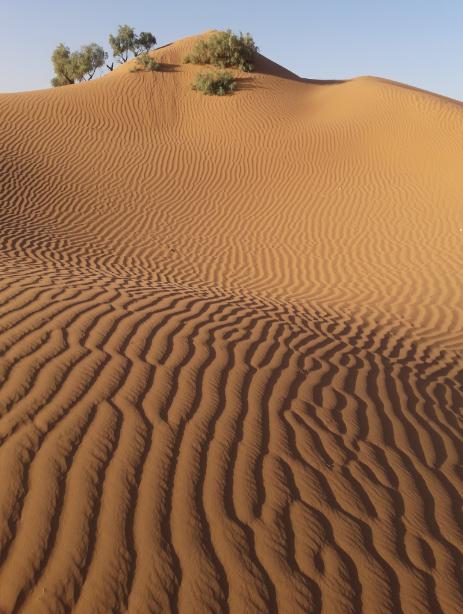 Photo désert marie 19